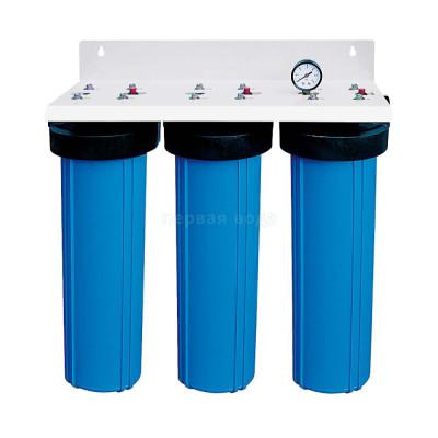"""Корпуса фильтров BIG BLUE - Фильтр BIG BLUE Bio+Systems L03 BB 20"""" настенный  - фото 1"""