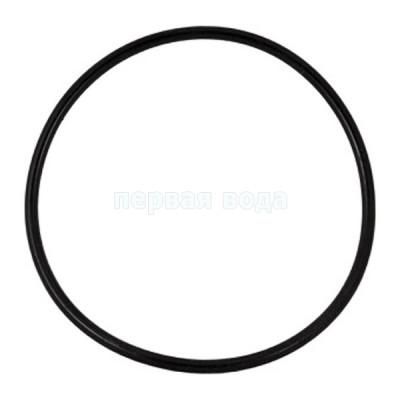 Разное (ключи, пластины, смазки, уплотнители) - Уплотнительное кольцо к Big Blue 10,20  - фото 1