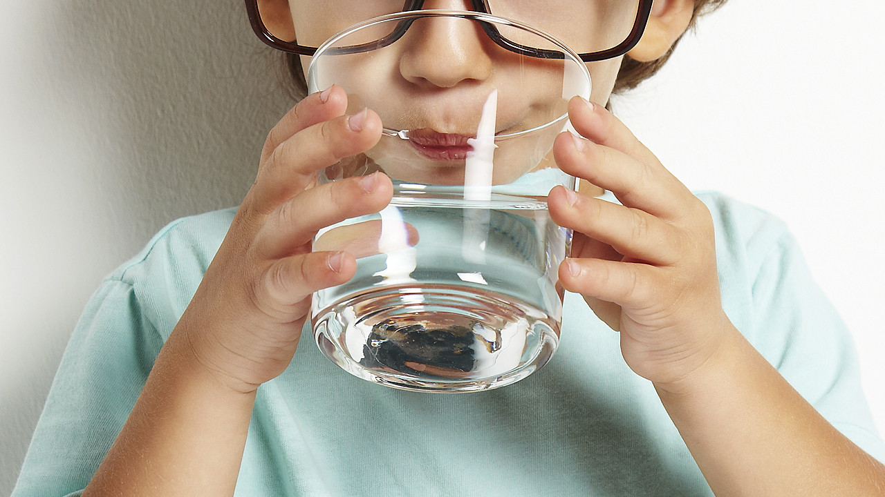 Как ухаживать за домашней хризантемой в домашних условиях 11